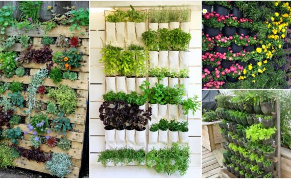 10 DIY Vertical Garden Ideas That You Will Find Helpful
