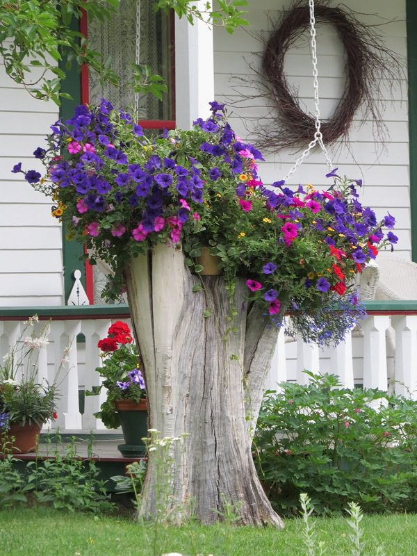Garden Decorations With Tree Stumps