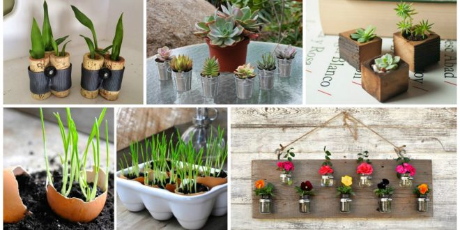 12 DIY Tiny Planters That Are Very Gergeous Will Blow Your Mind