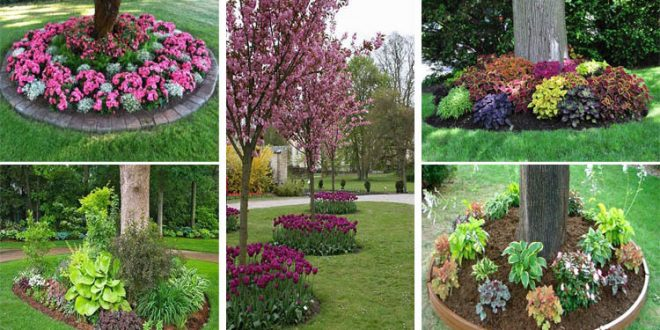 You Must See These 18 Genius Flower Beds Around Trees