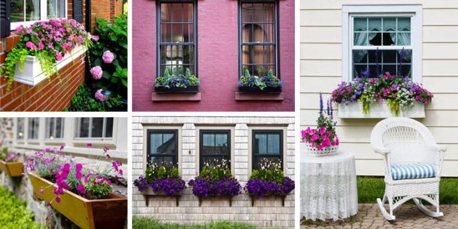 Beautiful Window Boxes To Prettify Your House Exterior
