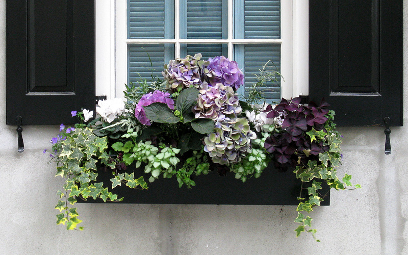 flower box ideas 15 fall container boxes will take your breath 29416