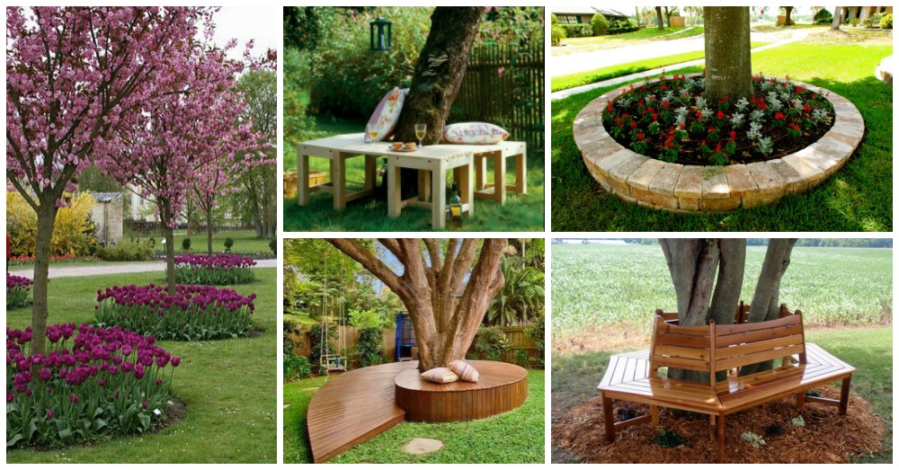 Landscaping Around Trees Ideas You Will Definitely Love To ...