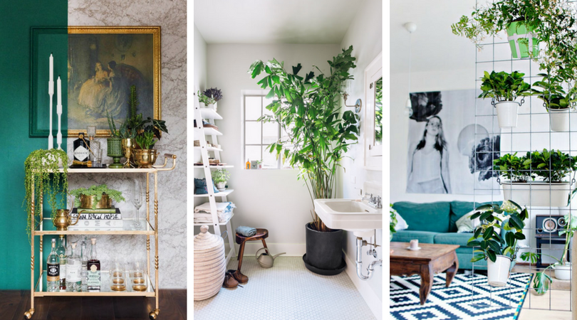 20 Fantastic And Mind Blowing Indoor Garden Ideas For Small