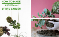 How to Make a Hanging Kokedama String Garden In 5 Easy Steps