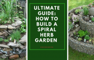 Ultimate Guide: How to Build a Spiral Herb Garden