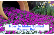 How to Make Spilled Flower Pot