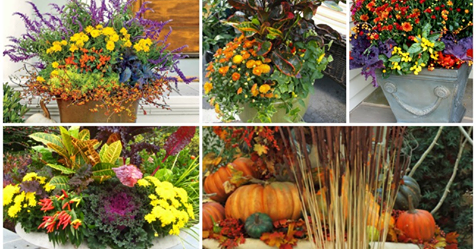 15+ Wonderful Fall Container Garden Ideas That Will Amaze You