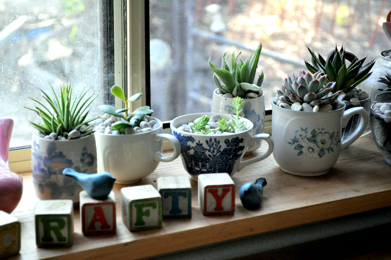 These Creative Teacup Plants Are Mind-Blowing