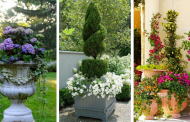 20  Fall Container Backyard Ideas That Will Blow Your Mind