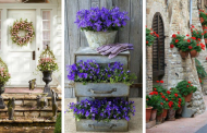 20 Fabulous Garden Container Ideas
