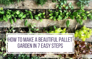 How To make A Beautiful Pallet Garden In 7 Easy Steps