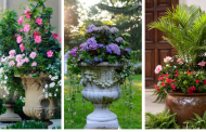 20 Absolutely Amazing Container Gardening Ideas That Will Take Your Breath