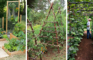 The 10 Best Ways To Style Your Very Own Vegetable Garden