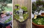 Top 20 Creative Fairy Garden You've Never Seen Before