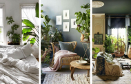 20 Creative Ideas To Display Your Indoor Plants