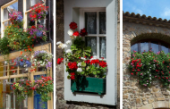 20 Beautiful Window Boxes To Make Your House Exterior More Wonderful