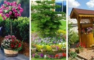 20 flower decoration ideas  you would like to see in your garden