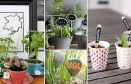 20 Cute DIY Plant Marker Ideas For Container Gardeners
