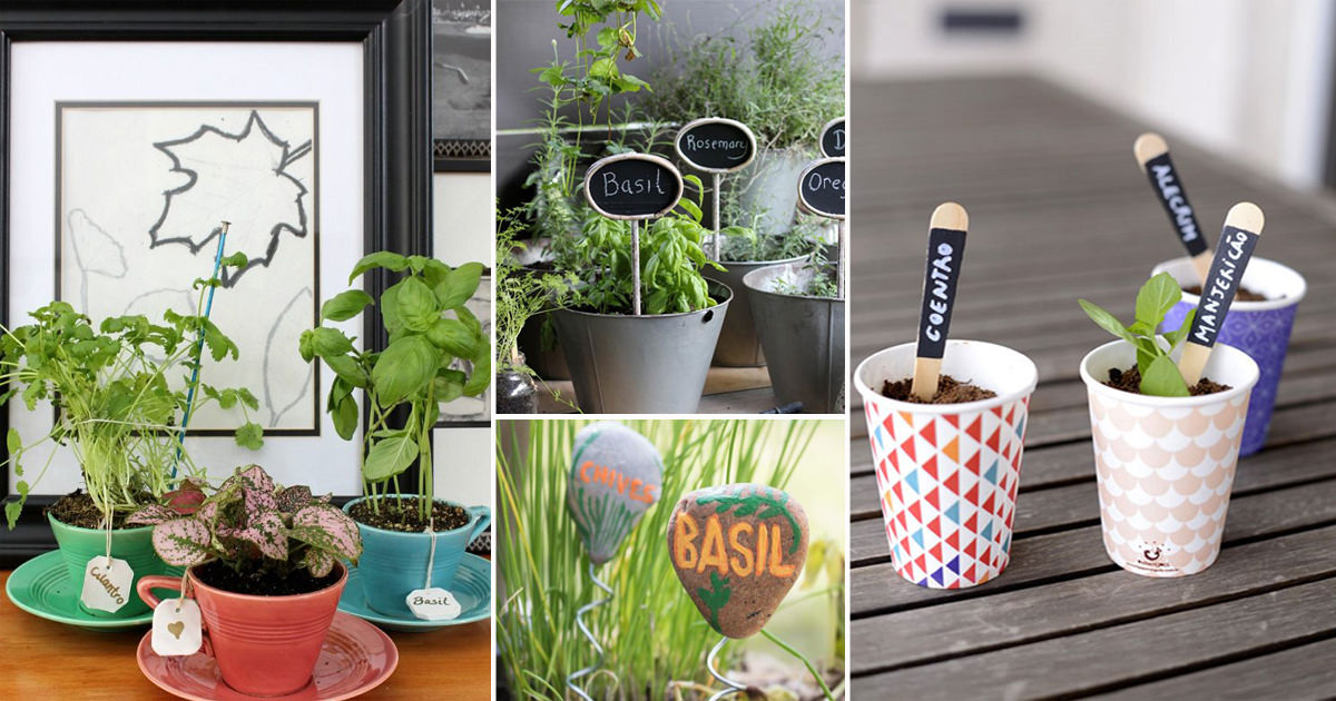 Cute DIY Plant Marker Ideas For Container Gardeners
