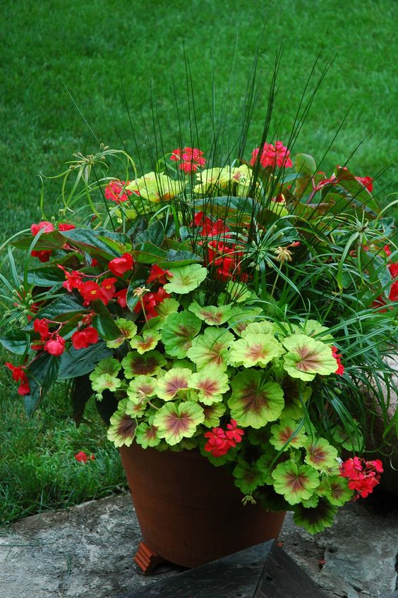 20 Stunning Container Garden Ideas That Will Take Your Breath on Tree Planting Ideas For Backyard id=68325