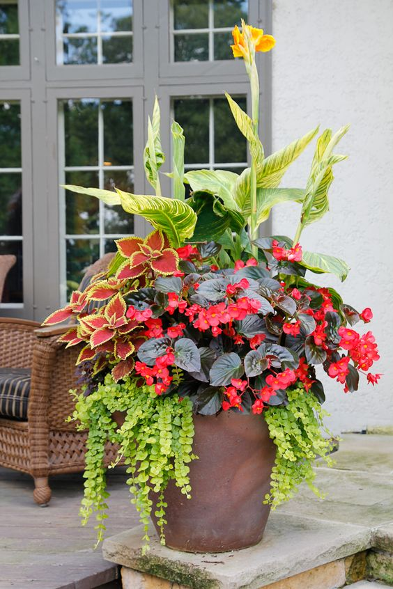 20 Stunning Container Garden Ideas That Will Take Your Breath