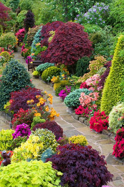 20 Pretty Pictures Of Garden Flowers Youll Ever See