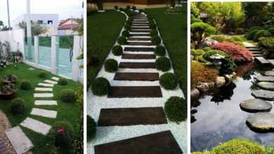 Garden Pathway Ideas that will inspire you