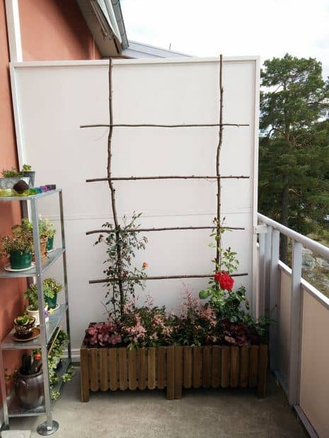 Natural wood trellis