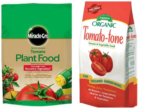 tomato fertilizers for growing tomato in self-watering buckets