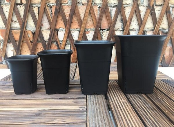 Adequate containers for growing tomatoes in them