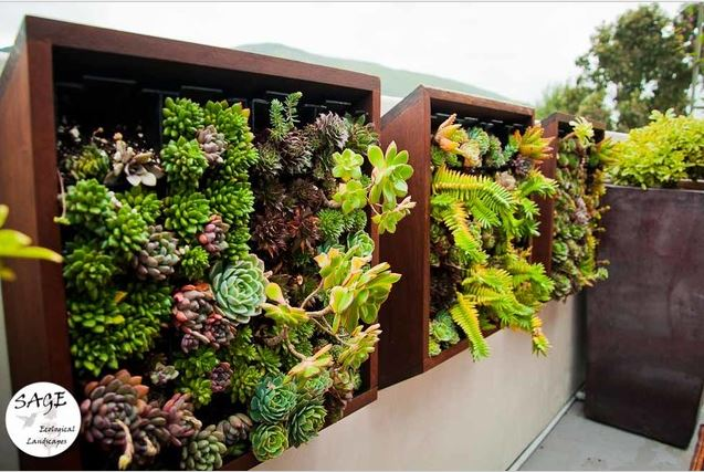 Wall balcony garden idea