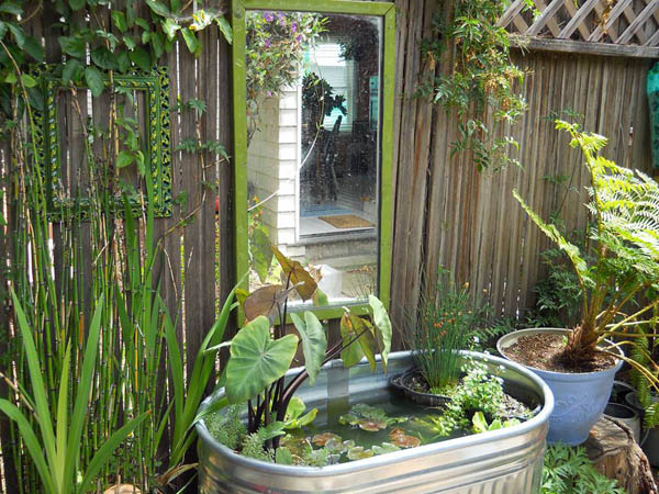 Farm stock tub converted into a backyard container pond