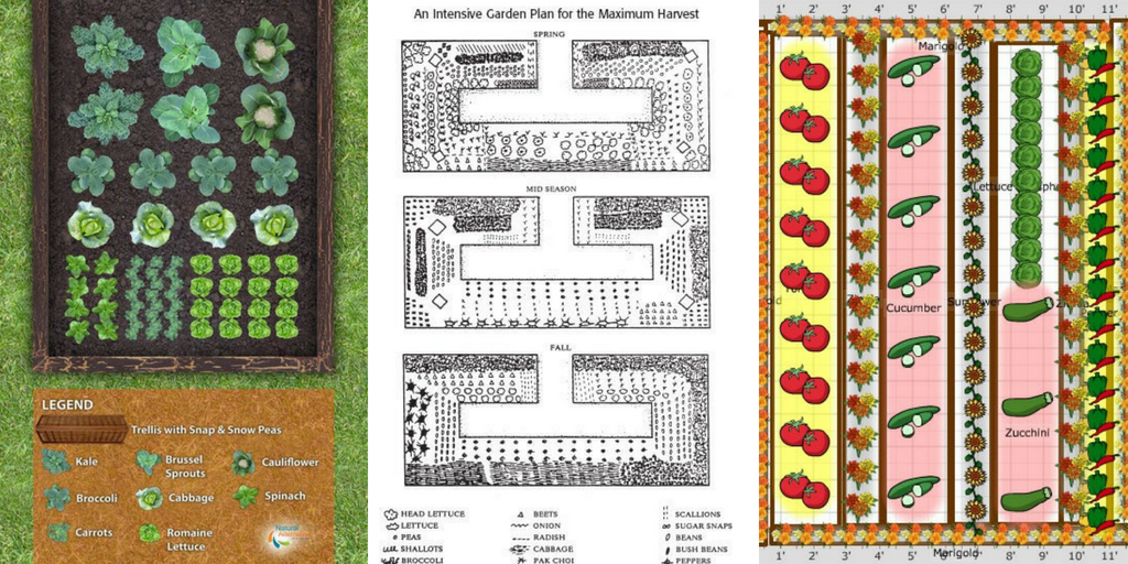 Vegetable Garden Design Ideas The Best 18 Working Design Ideas
