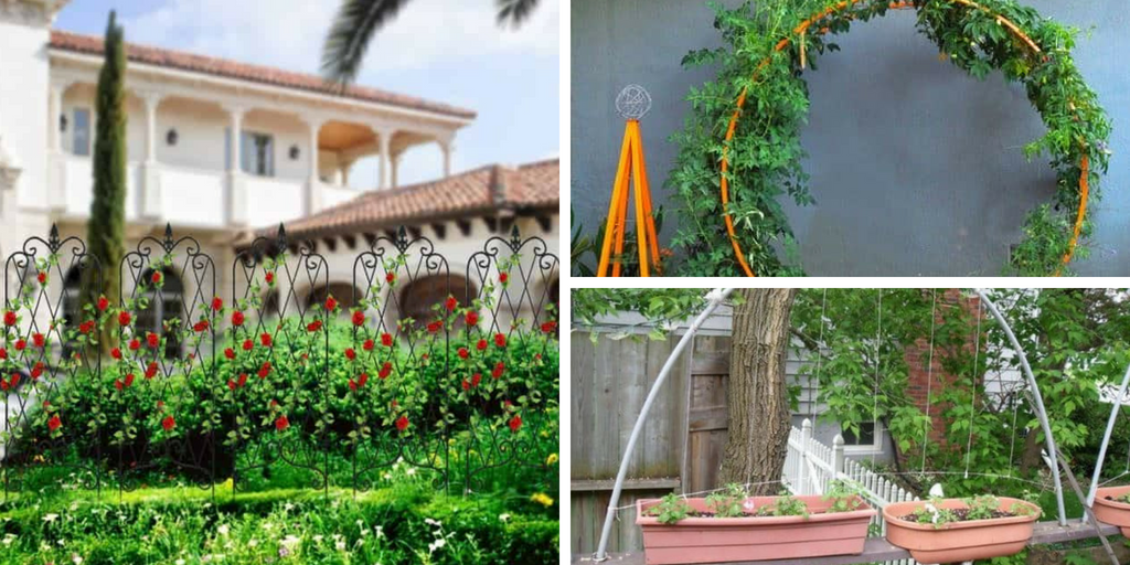 Garden DIY And Ideas