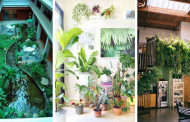 25 Awesome Indoor Garden