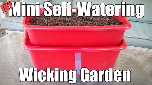 wicking bed self watering container