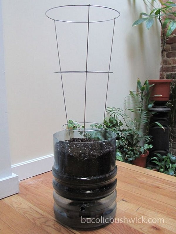 Self Watering Water Cooler container