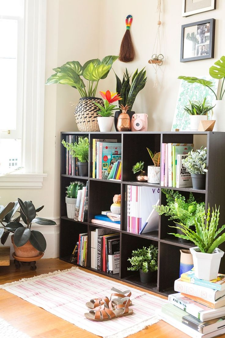 Indoor Plants Ideas That Will Make Your Interior House Astonishing