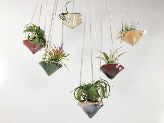 Cute Cone Hanging Air Plant Holders