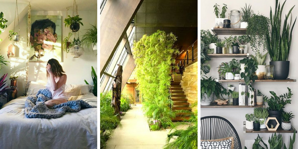 24 Indoor Gardening Ideas You Don\'t Want To Miss