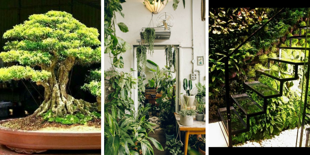 24 CREATIVE DIY INDOOR GARDEN IDEAS