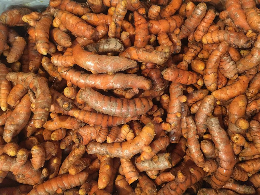 how to grow turmeric from roots