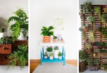 The most attractive 15 decorative indoor vertical garden ideas