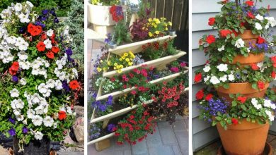 14 Decorative Flower tower ideas that will blow your mind