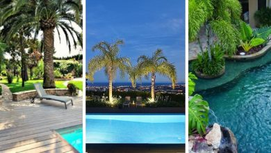 9 incredibly decorative trees for pool landscaping