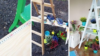 How to make a decorative and functional DIY ladder shelf