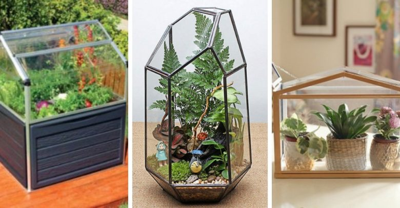 13 Attractive DIY Mini Zen Gardens For Tables and Desks