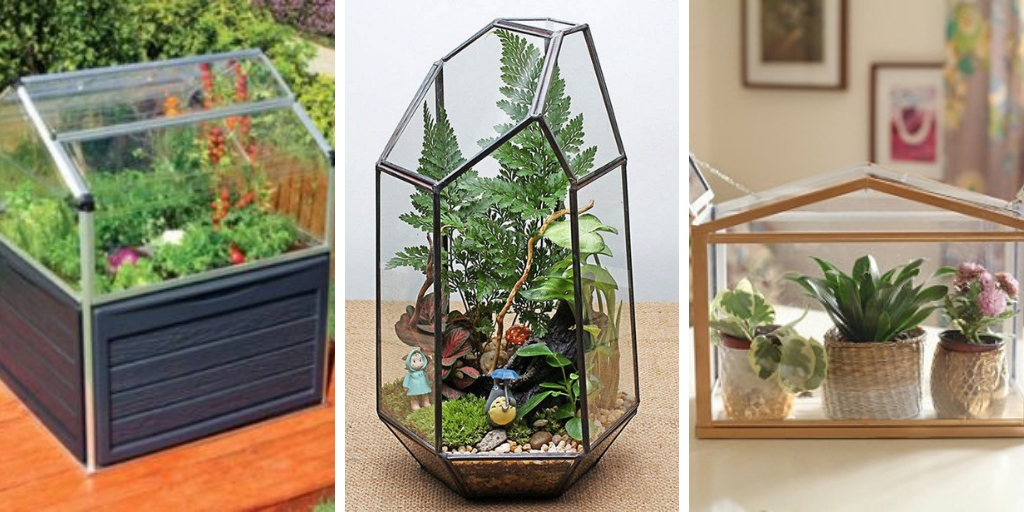 15 Creative DIY Mini Indoor Greenhouses