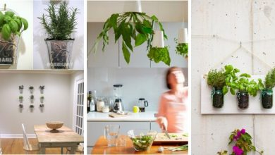 23 Indoor Small Herb Gardens That Will Inspire You